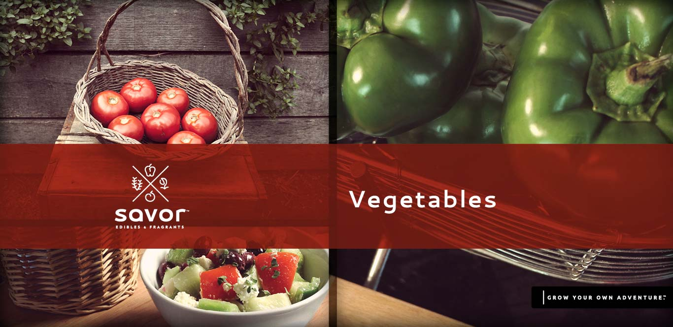 Savor Vegetables